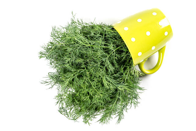 Green cup on white background with fresh dill, top view