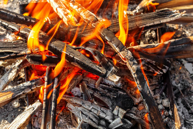 Burning fire in a bonfire, close-up
