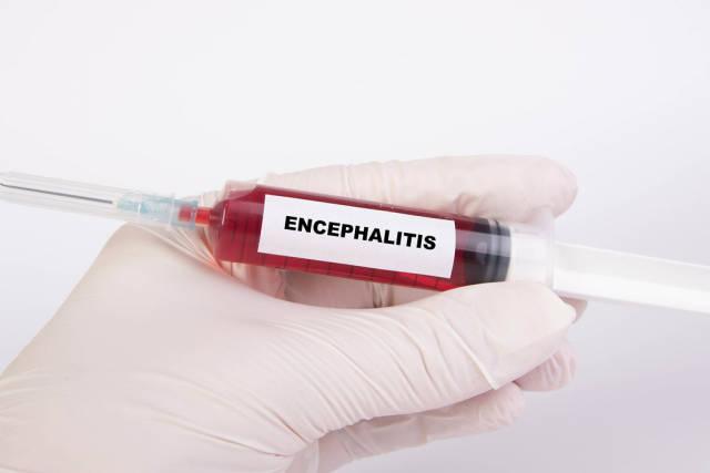 Injection needle with Encephalitis text