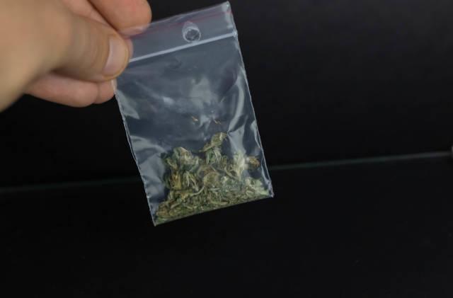 Man holding pack of marijuana