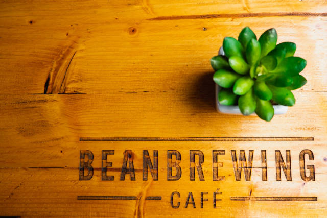 Flat lay showing engraved coffee shop name with small plant