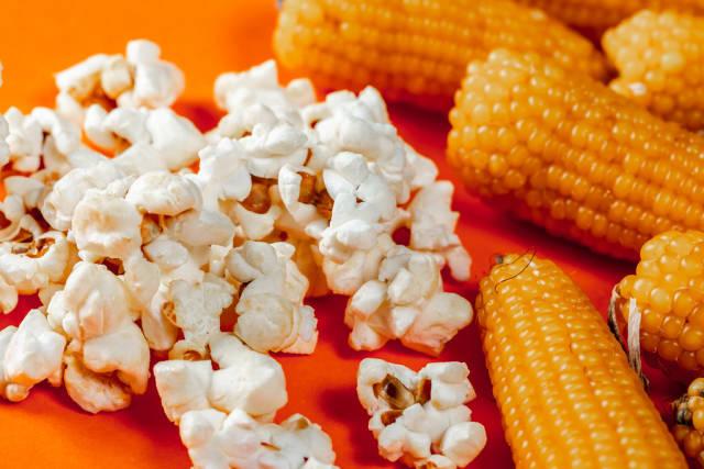 Heads of corn and popcorn on orange background