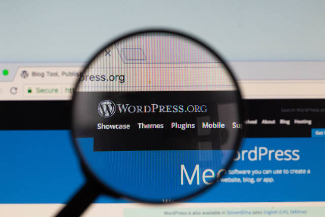 Wordpress-Logo am PC-Monitor, durch eine Lupe fotografiert