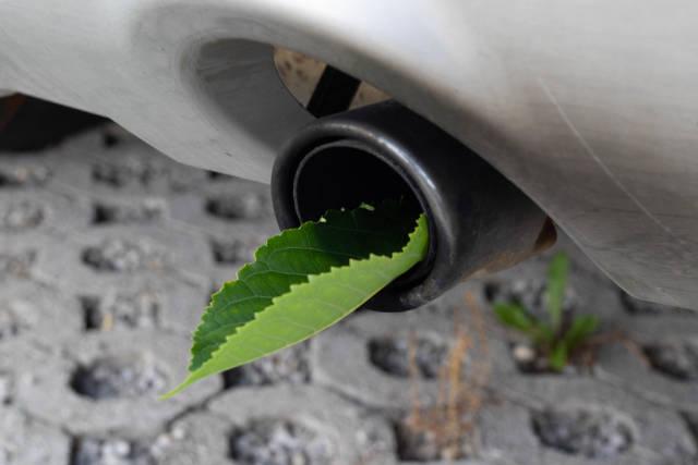Auspuff eines kraftstoffeffizienten Autos mit grünem Blatt