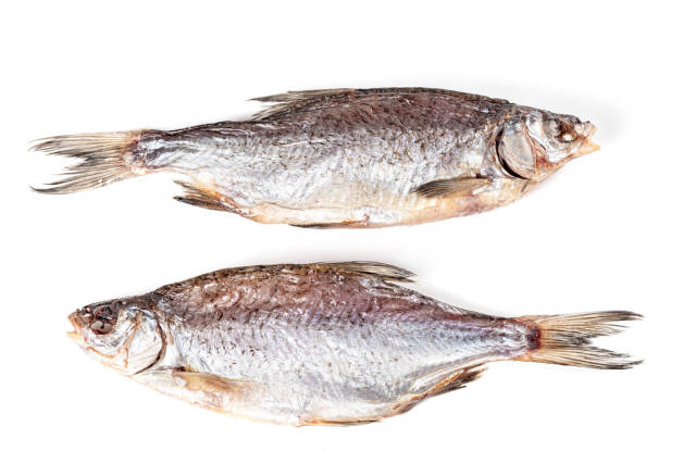 Two dried fish roach on a white background