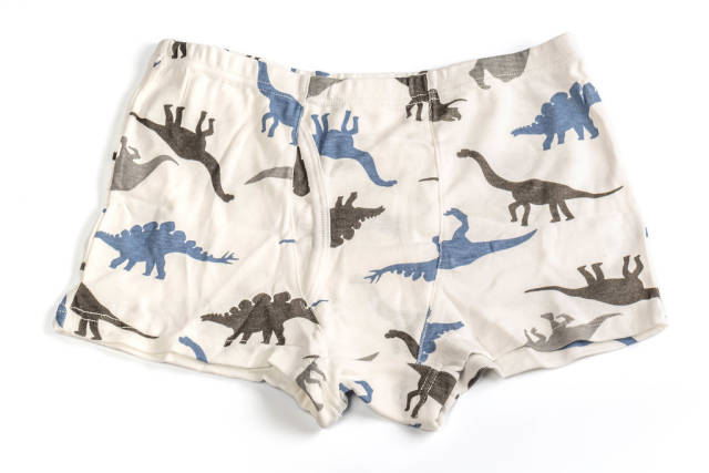 Childrens knitted shorts with dinosaurs for boys