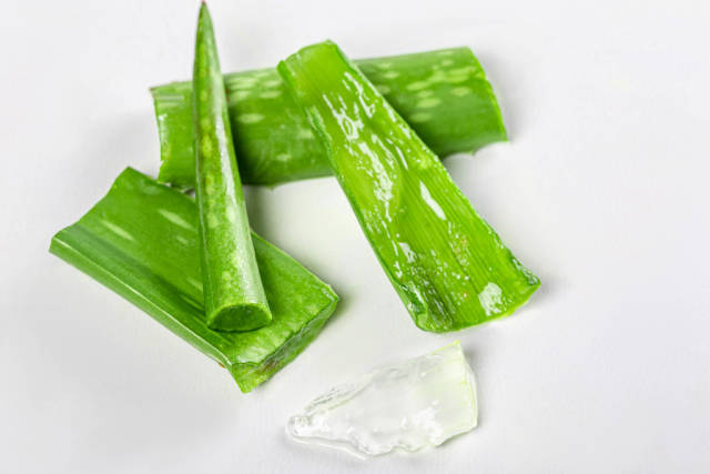 Fresh green pieces of aloe leaves on white background