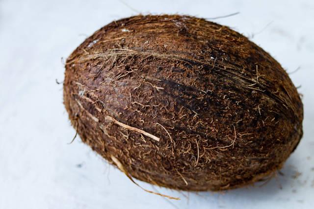 Coconut / Kokosnuss