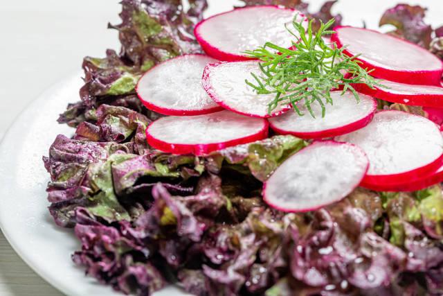 Close - up of lettuce and radish salad