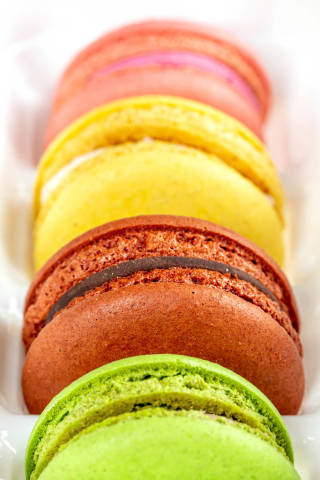 French macaroons multicolored dessert, close up
