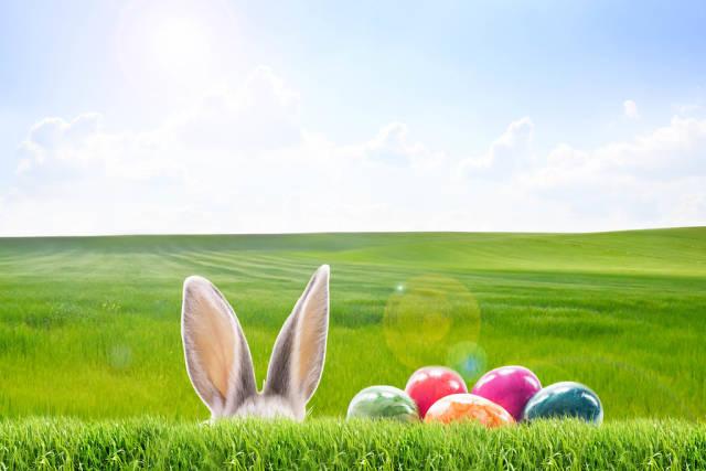 Frohe Ostern am 12.04.2020 und 04.04.2021
