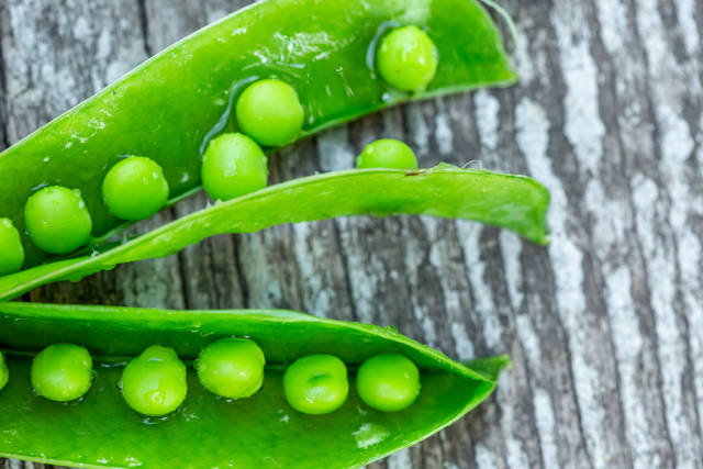 Fresh young peas in a pod close up