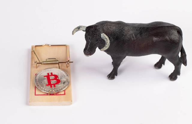 Bitcoin bull trap concept