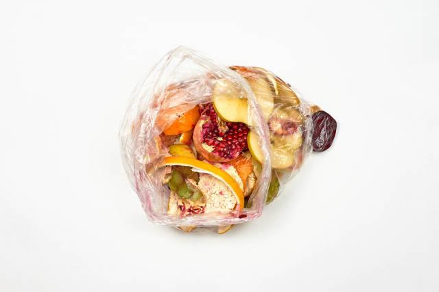 Organic food wastes in a bucket