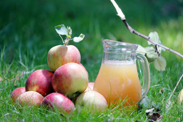 Carafe of apple juice and apples on the grass