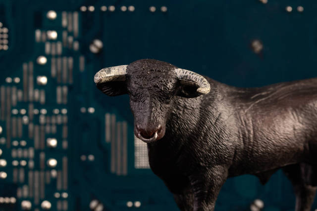 Black bull with computer chips in the background