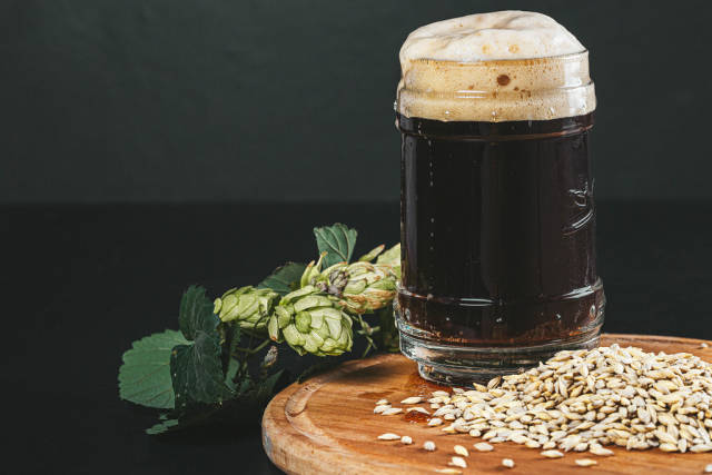 Dark unfiltered beer in a glass mug with hops and barley
