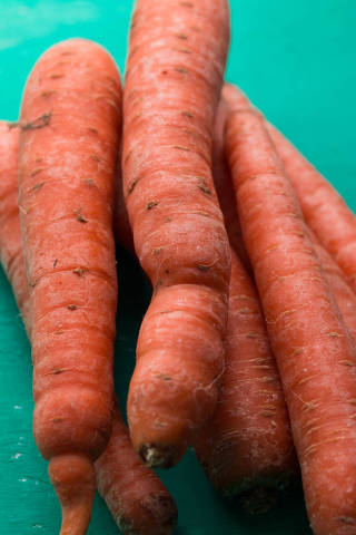 Close up of group of carrots