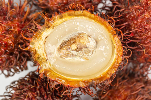 Close-up of half ripe rambutan fruit with seed