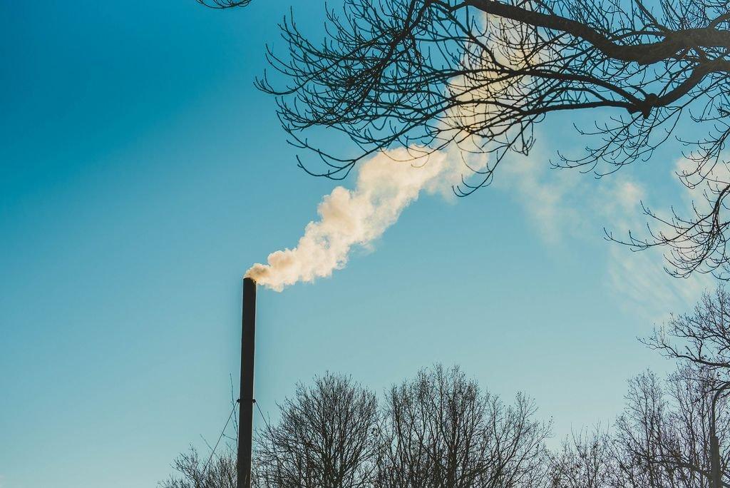 Industriekamin bläst Rauch in den blauen Himmel, im Vordergrund ein Ast