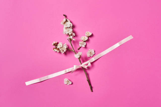 Blossoming tree branches with ribbon on pink