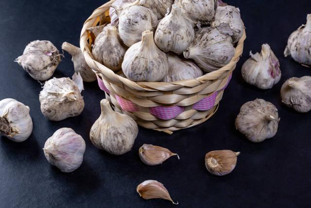 Fresh raw garlic in basket