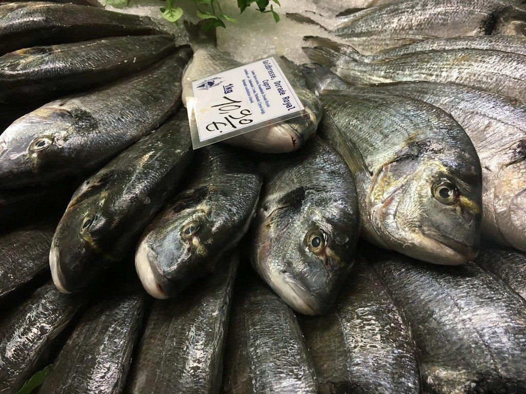 Fisch: Dorade Royal / Goldbrasse