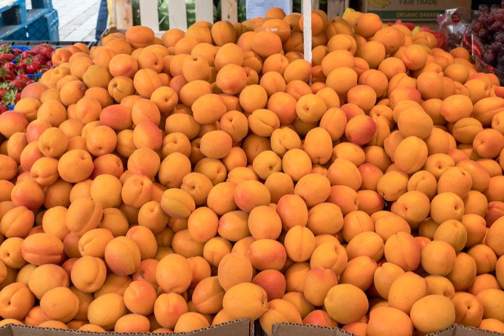 Große Kisten voll mit Aprikosen