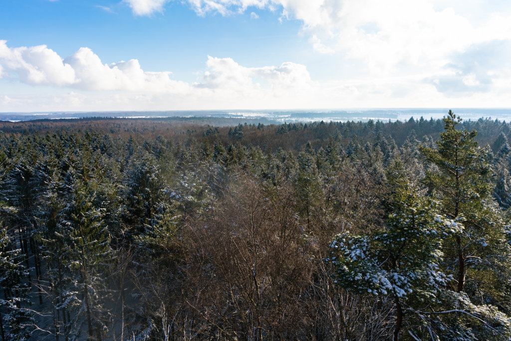 Bird-eye view of Hahnneide forrest in winter with frozen lakes in background