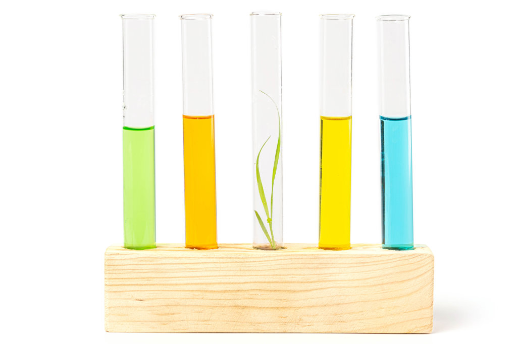 The concept of genetically modified plants and their chemical research