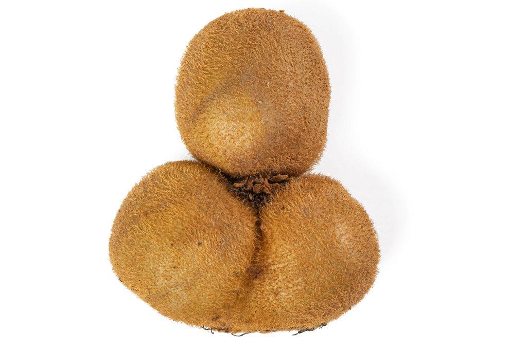 Whole kiwi fruit on white background
