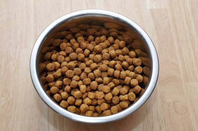 Trockenfutter / Hundefutter (Dog Food)