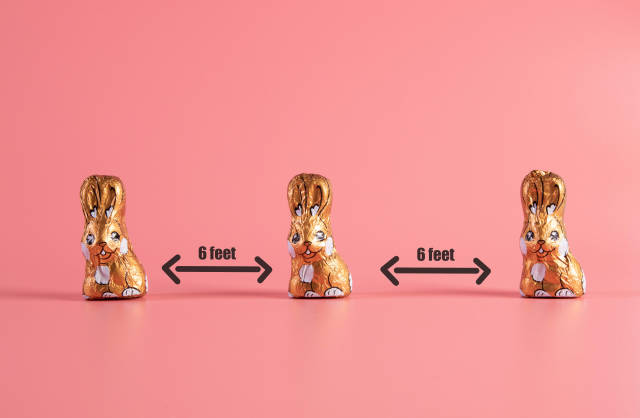 Keep your distance concept with chocolate easter bunnies on pink background