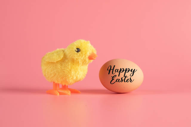 Cute little chicken and egg with Happy Easter text