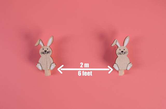 Social distancing concept with cute Easter bunnies