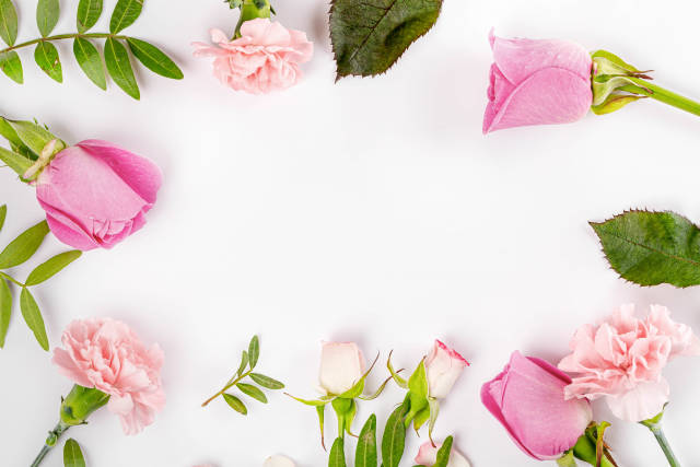 Frame of fresh flowers on a white background with a free space in the middle