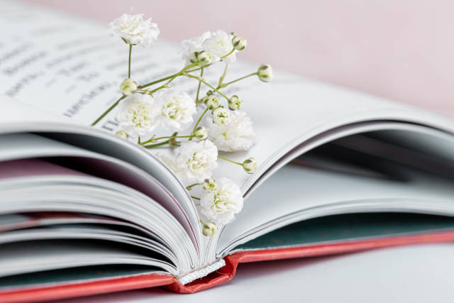 Little white flowers in an open book