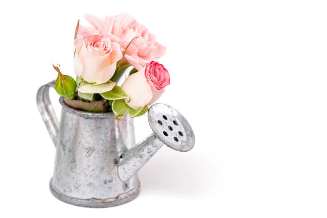 Metal watering can with pink flowers
