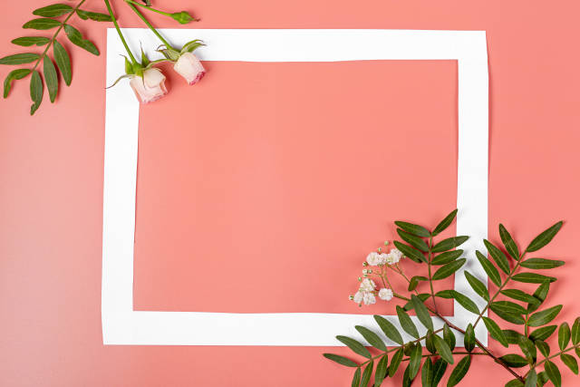 Frame on pink background with green leaves and roses, mothers day background