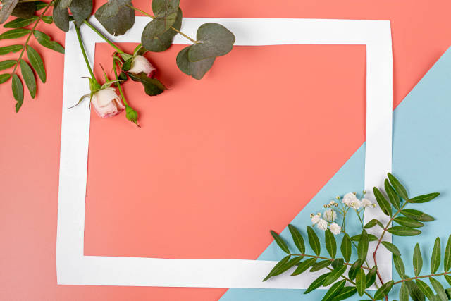 Pink-blue background with leaves and flowers with a free space in the middle