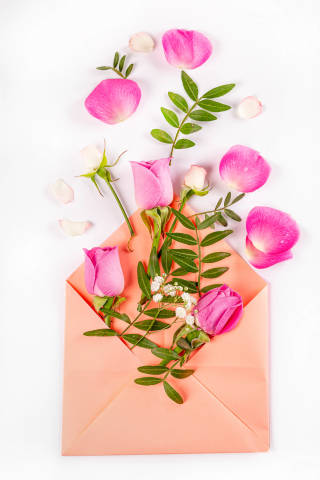 Open envelope with flowers and petals on a white background