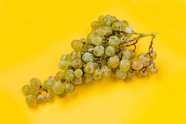 Green grapes on bright yellow background