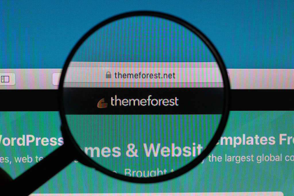 Themeforest logo under magnifying glass