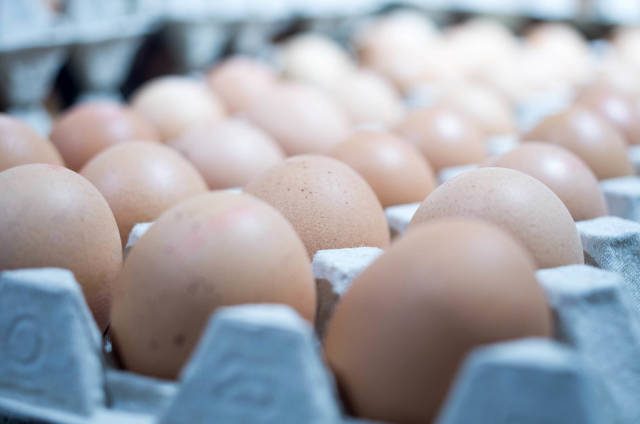 eggs at the supermarket