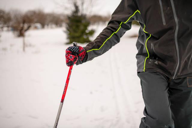 Skiing Stick CloseUp Moving Men