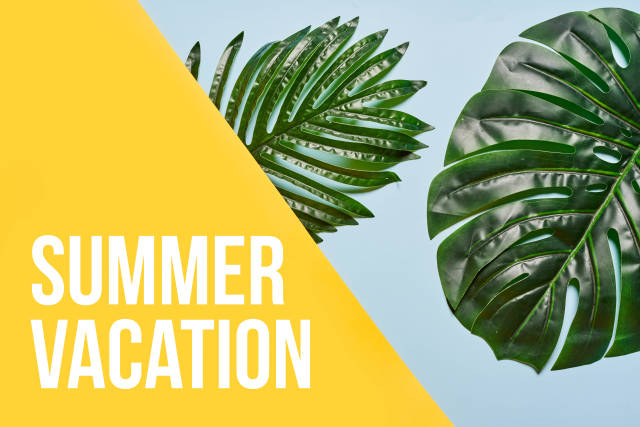 Summer vacation concept with tropical palm leaves