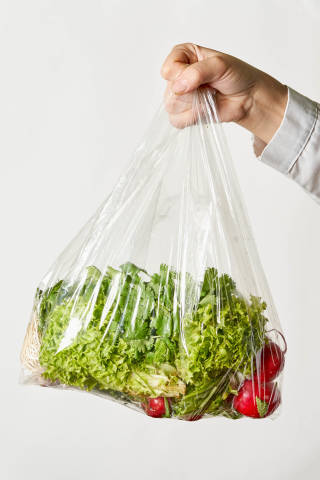 Hand holds a bag of fresh organic vegetables and greens