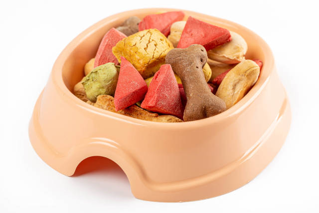 Colorful pieces of dried treats for pets