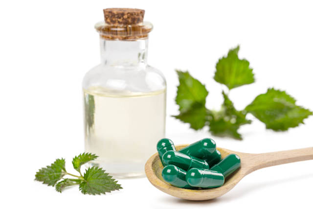 Nettle essence oil in bottle, green capsules and fresh leaves on white, concept medicinal herb for health and beauty
