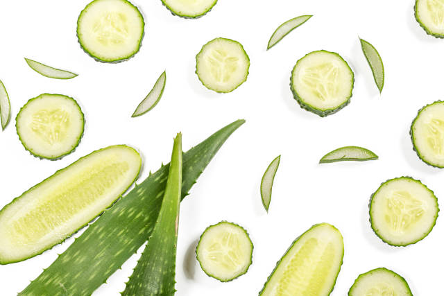 Green fresh aloe vera leaf with sliced and cucumber on white